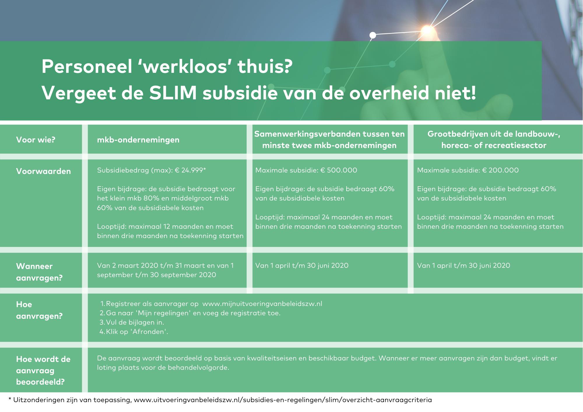 SLIM subsidie